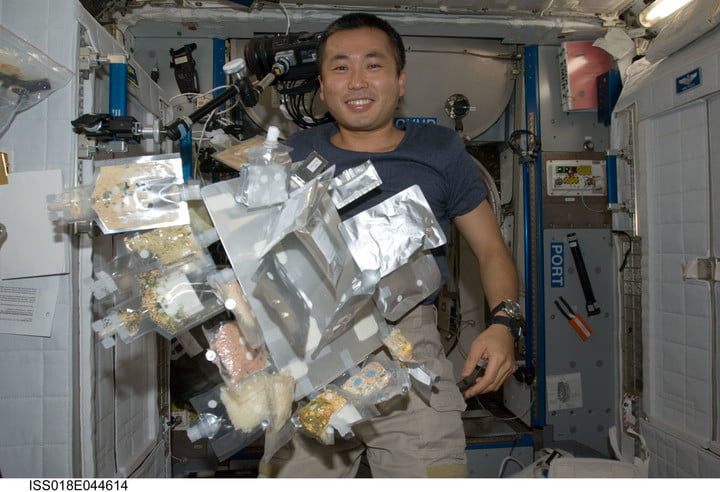 Japan Aerospace Exploration Agency (JAXA) astronaut Koichi Wakata, Expedition 18/19 flight engineer, is pictured near food and drink containers floating freely in the Harmony node of the International Space Station.